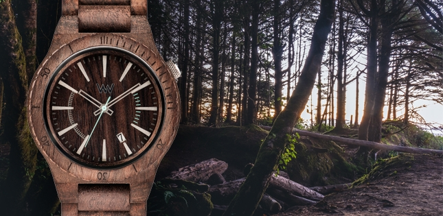 Sustainable Fashion: WeWood Recycled Watches