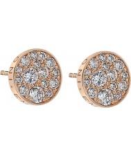 Emozioni DE457 Ladies Scintilla Rose Gold Plated Earrings