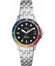 Fossil LE1111 Pride Watch