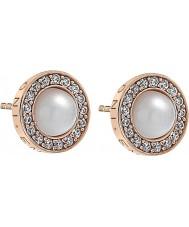 Emozioni DE461 Ladies Pearl Rose Gold Plated Earrings