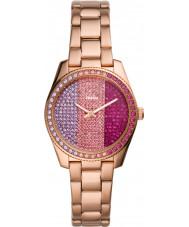 Fossil LE1114 Ladies Scarlette Mini Watch