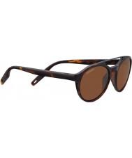 Serengeti 8595 Leandro Tortoise Sunglasses