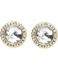 Fossil JA7019710 Ladies Earrings