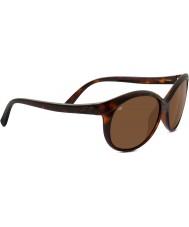 Serengeti Caterina Shiny Dark Tortoiseshell Polarized Drivers Sunglasses