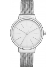 Skagen SKW2478 Ladies Ancher Silver Steel Mesh Watch