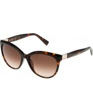 Furla Ladies Zizi SU4896S-743 Shiny Brown Havana-Yellow Sunglasses
