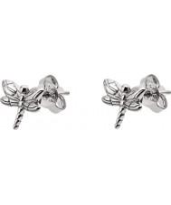 Emporio Armani EG3356040 Ladies Earrings