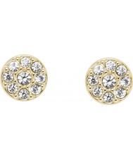 Fossil JF02985710 Ladies Earrings