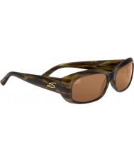 Serengeti 7365 Bianca Tortoiseshell Sunglasses