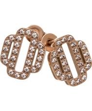 Edblad 31630032 Ladies Elvira Rose Gold Plated Stud Earrings