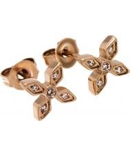 Edblad 31630049 Ladies Windsor Earrings