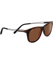 Serengeti Pavia Shiny Dark Tortoiseshell Polarized Drivers Sunglasses