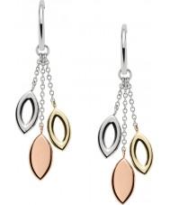 Fossil JF02777998 Ladies Earrings