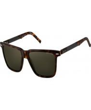 Oxydo Mens OX 1059-S AXB QT Tortoiseshell Sunglasses