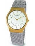 Skagen 233LGS Mens Steel Chrome Gold Watch